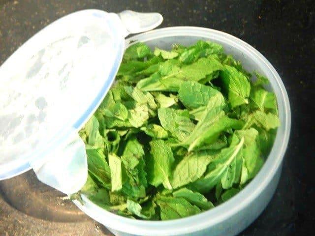 Ginger Mint Chai Recipe 5