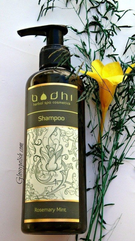 Bodhi Rosemary Mint Shampoo Review