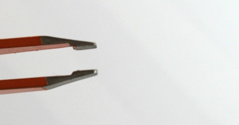 Colorbar Wow Brows Slant Tip Tweezer Review 2