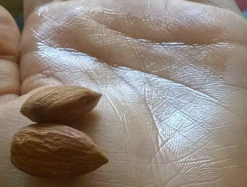Bajaj Almond Drops Hair Oil Review 2