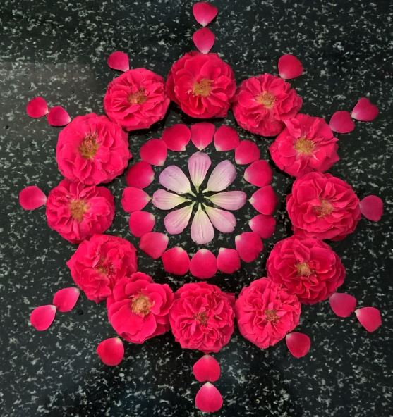 What are Top Flower Rangoli Designs Images 2019