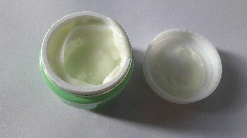 Garnier Skin Naturals Daily Care Moisturising Cream with Grapefruit and Vitamin E 2