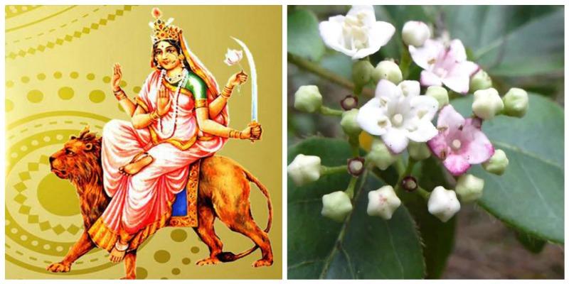 Goddess Katyayani or Mahalakshmi