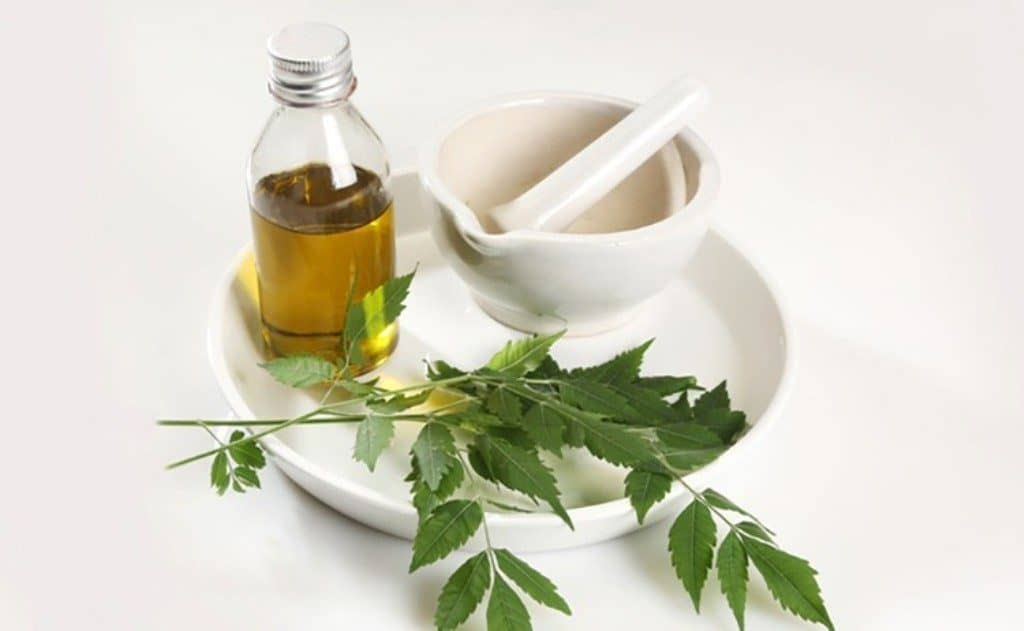 Neem Oil Benefits for Skin