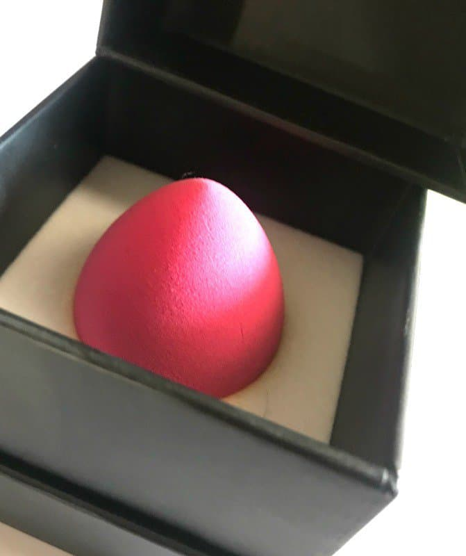 PAC Beauty Blender Sponge 2