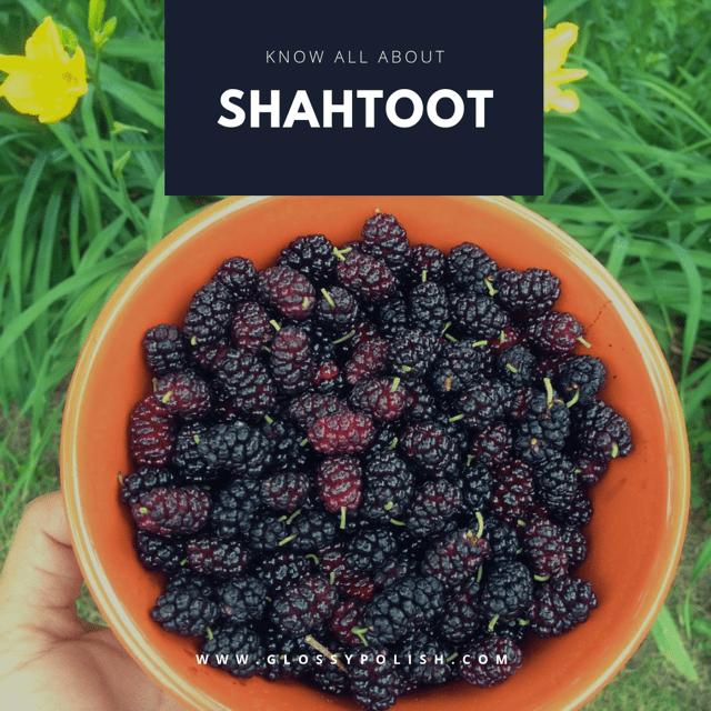 Shahtoot
