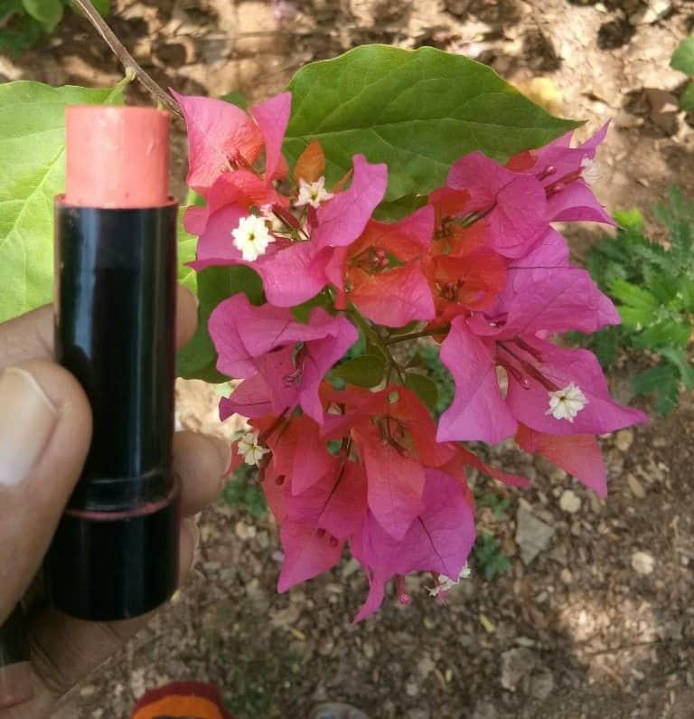 Street Wear Berry Dreamy Color Rich Ultra Moist Lip Color Review 5