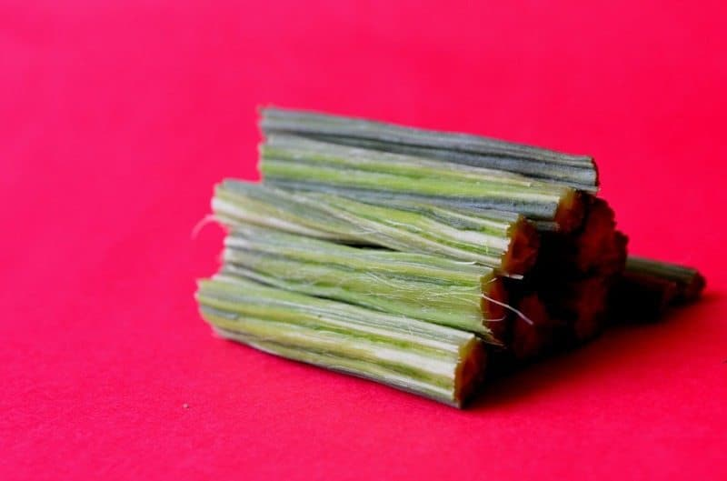"""Why is Moringa Tree is Called """"The Miracle Tree of Life"""" 1"""